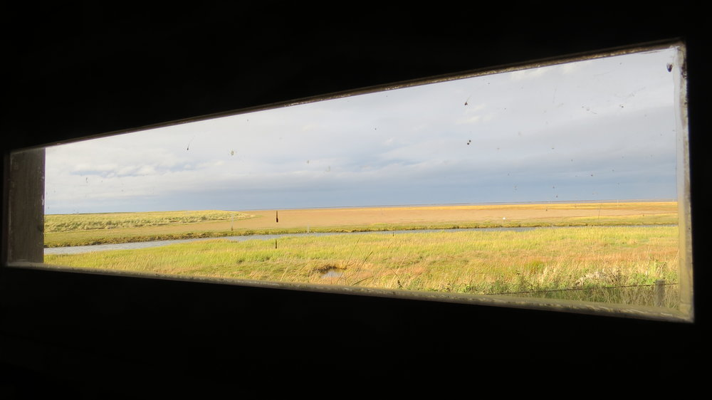 View from Bird Hide