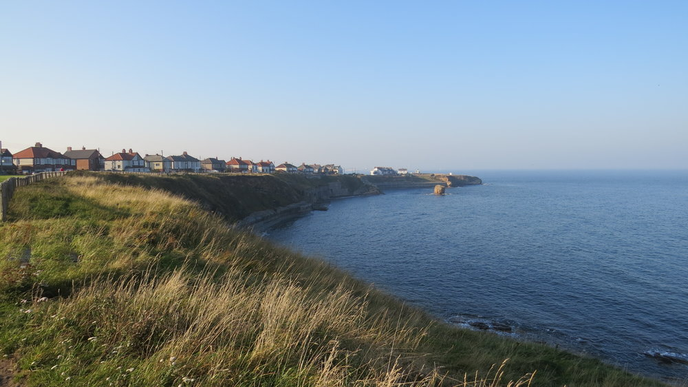 Looking back to Seaton Sluice