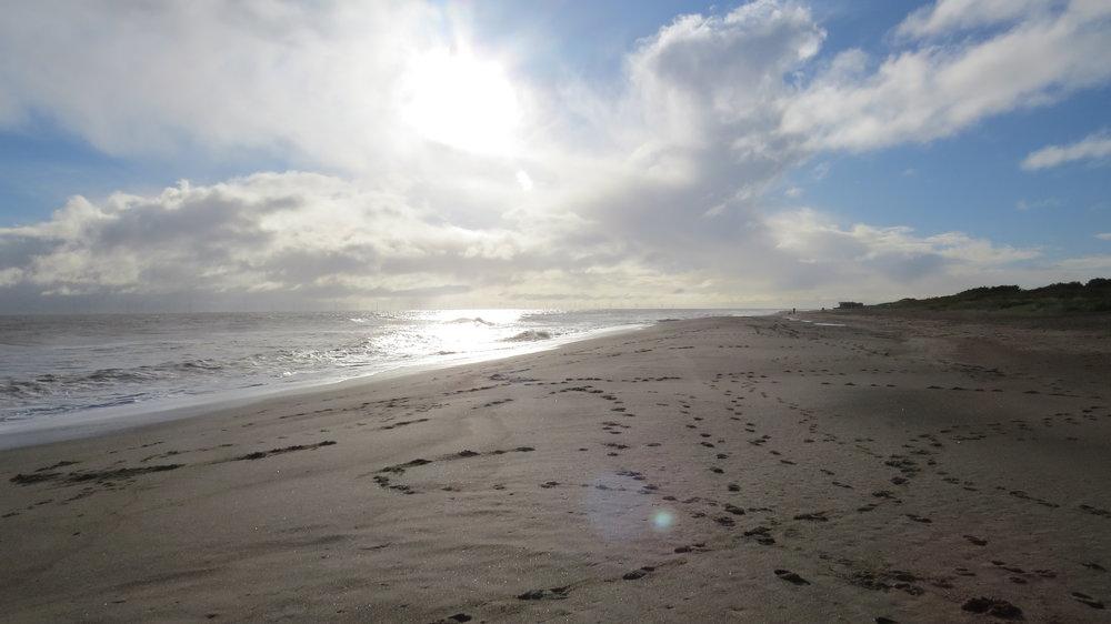 Many Footprints on Beach