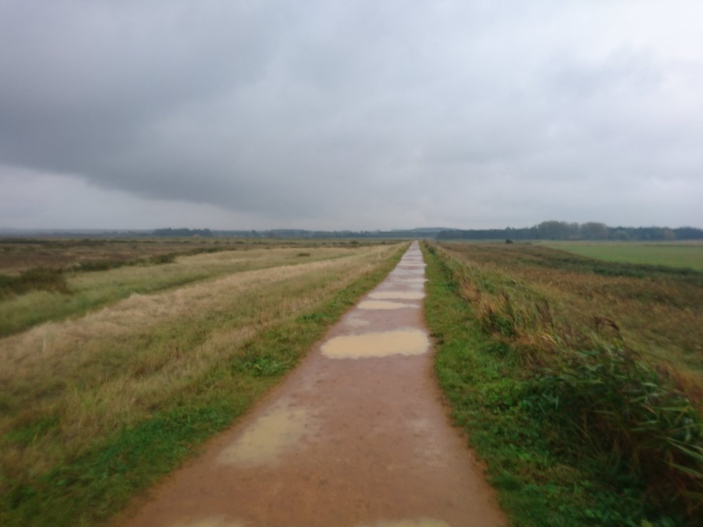 Path to Thornham