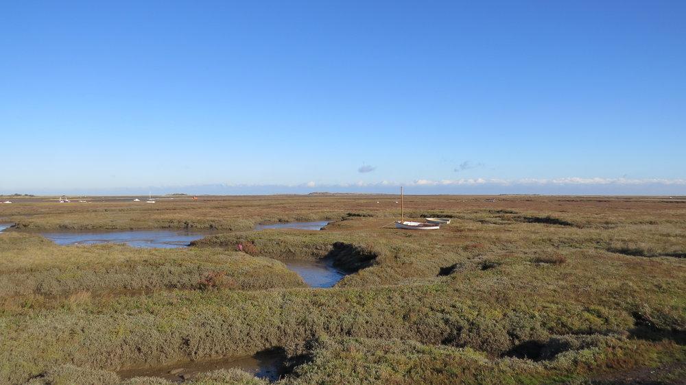 Marsh and Mud Flats