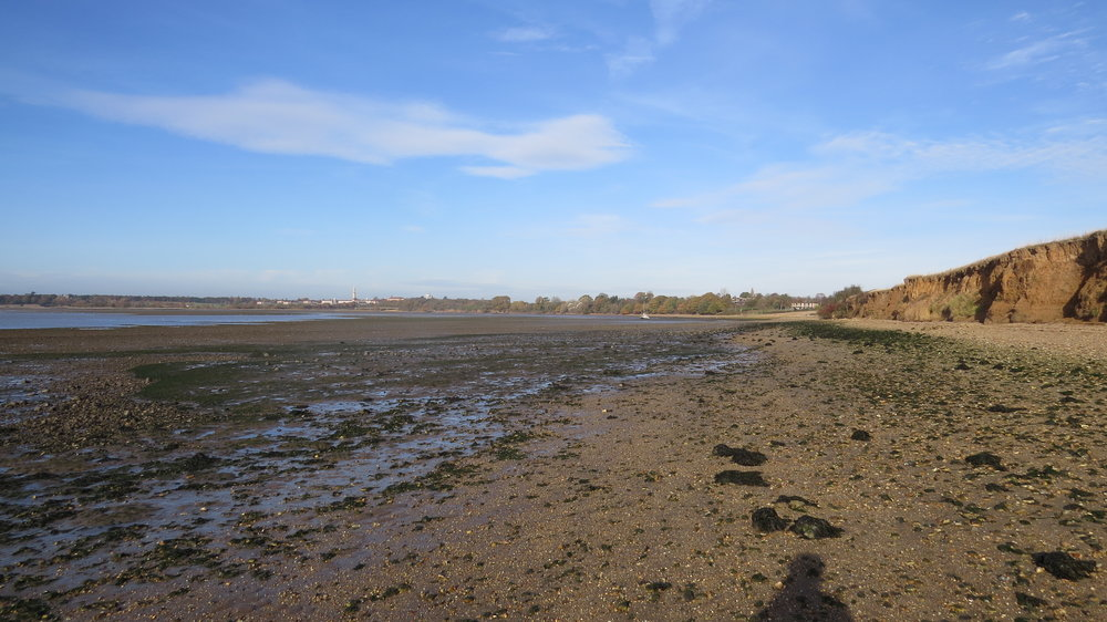 Beach/Mudflat Walking I