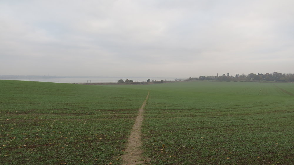 Path across a Field