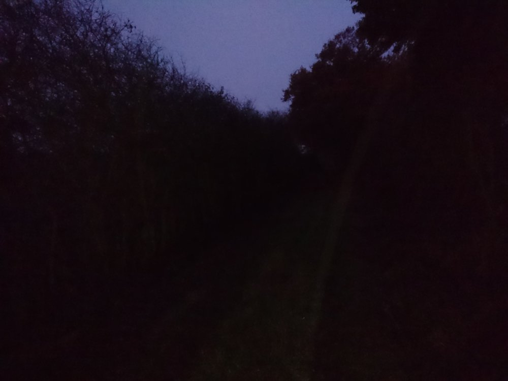 Walking in the Dark & Wet