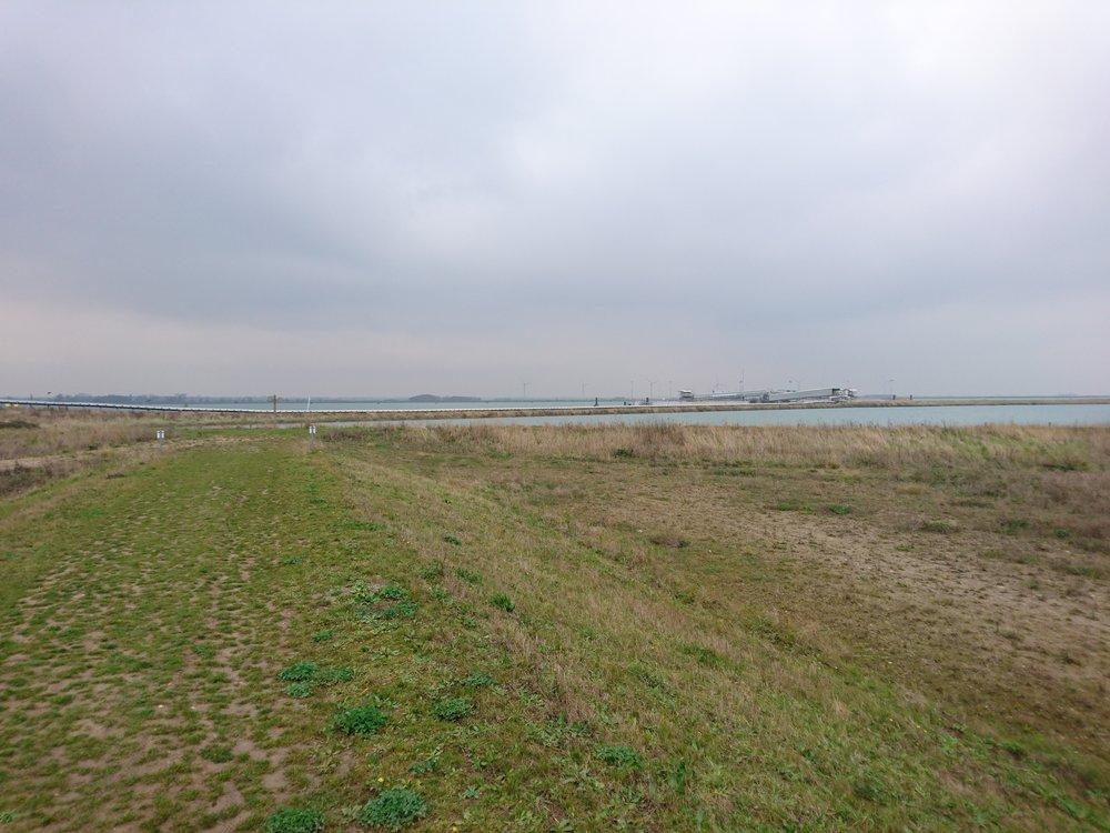 Wallasea Embankment I