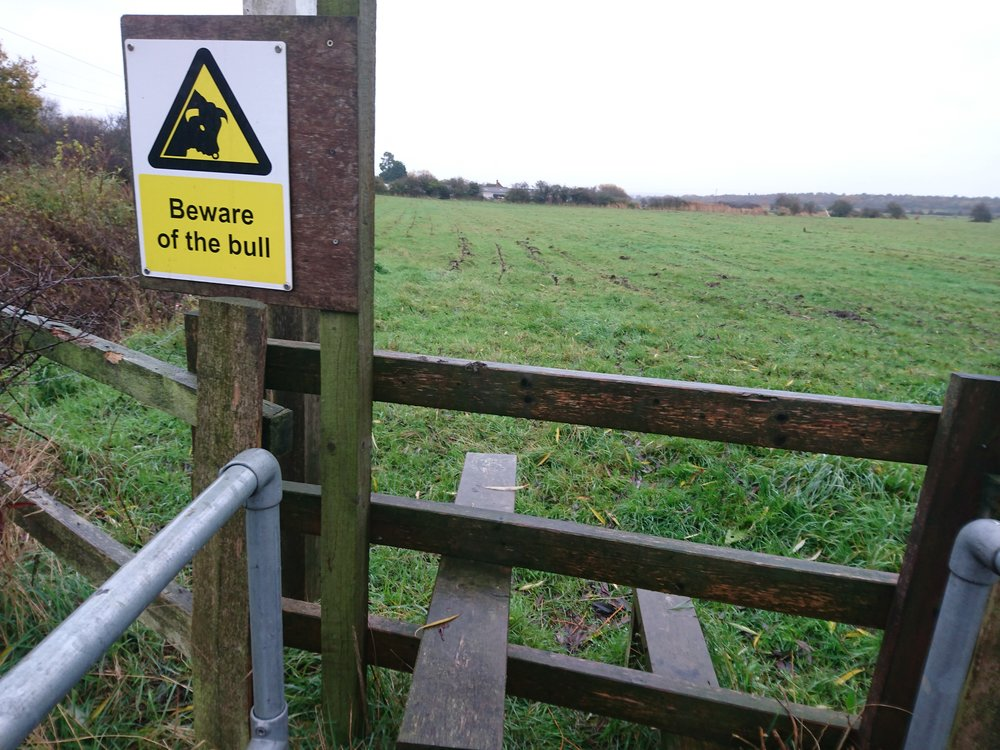 Bull Warning on Public Footpath