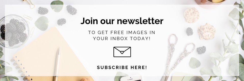 the-stock-boutique-newsletter-blog.jpg