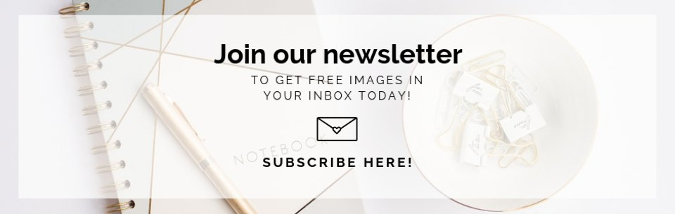 the-stock-boutique-newsletter