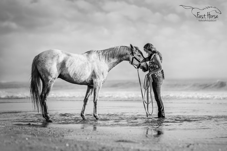Los angeles professional equine photographer cara taylor swift fast horse photography of the united states was presented with the 12th annual black and