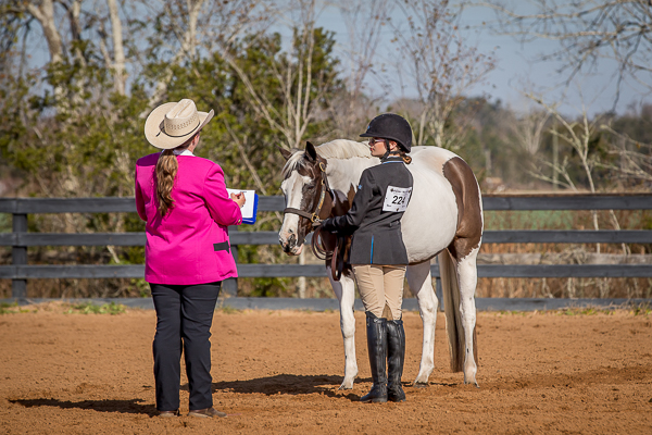 horse show judge photographs.jpg