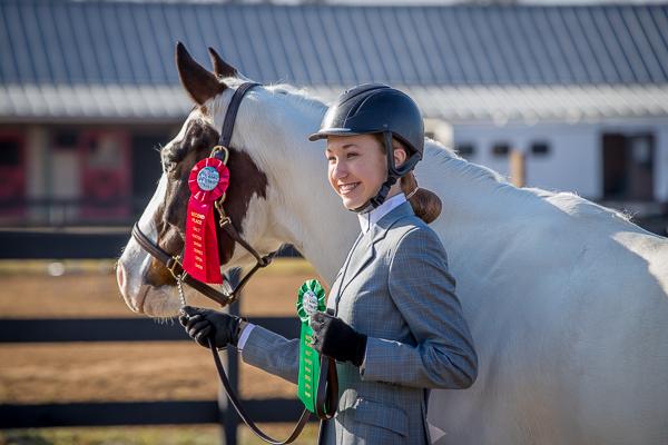 horse show photographs.jpg