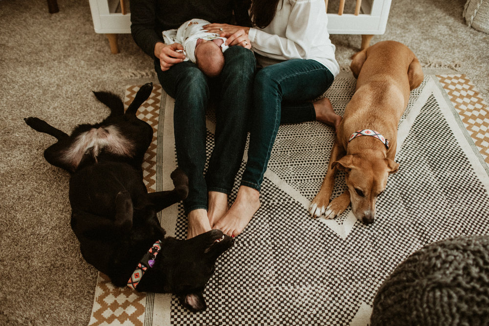 230_san antonio family lifestyle photographer.jpg