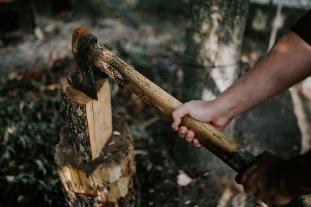 kaboompics_Chopping wood in the forest.jpg
