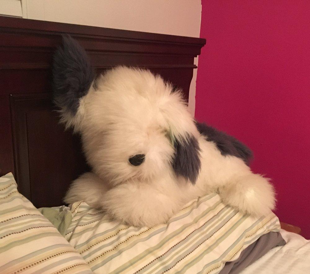 Fuzzy to sleep with - thanks Jess