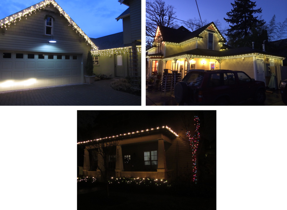Seasonal Lighting Installation -