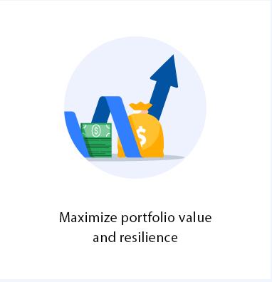 Services-maximizeportfolio.PNG