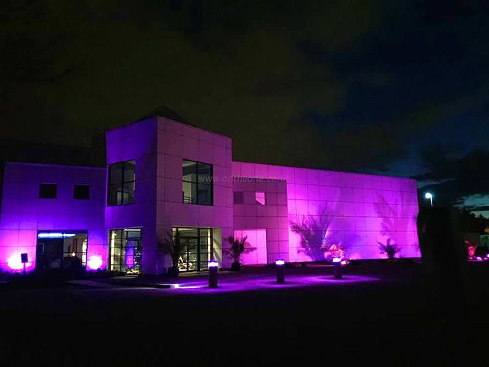 EXPERIENCE PAISLEY PARK • PRINCE'S MINNEAPOLIS