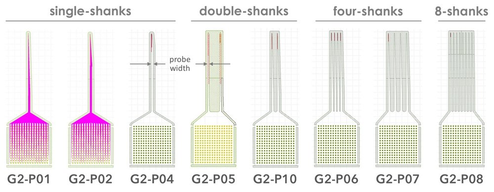Figure 1.  Gen-2 Neural Nanoprobe Designs.  Nanoprobes P01, P02, P04, P06, P07, P08, and P10 enable highly-multiplexed  Ephys  measurements. Nanoprobe P05 facilitates concurrent  Echem  and  Ephys  measurements. Specification for each of these probes is summarized in Table 1, below.