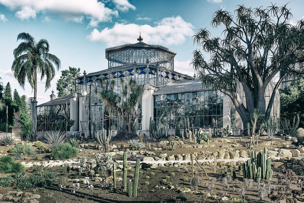 Palm House Adelaide Botanic Garden