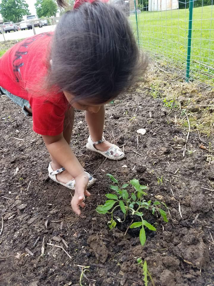 Outdoor_gardening 4.jpg