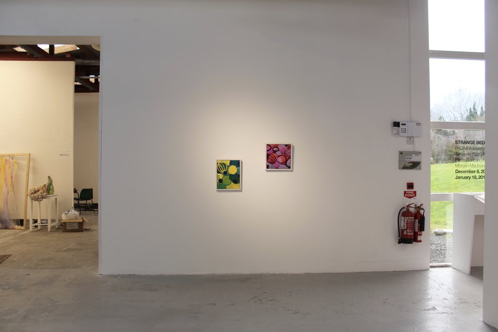 Strange Bedfellows Installation Shot