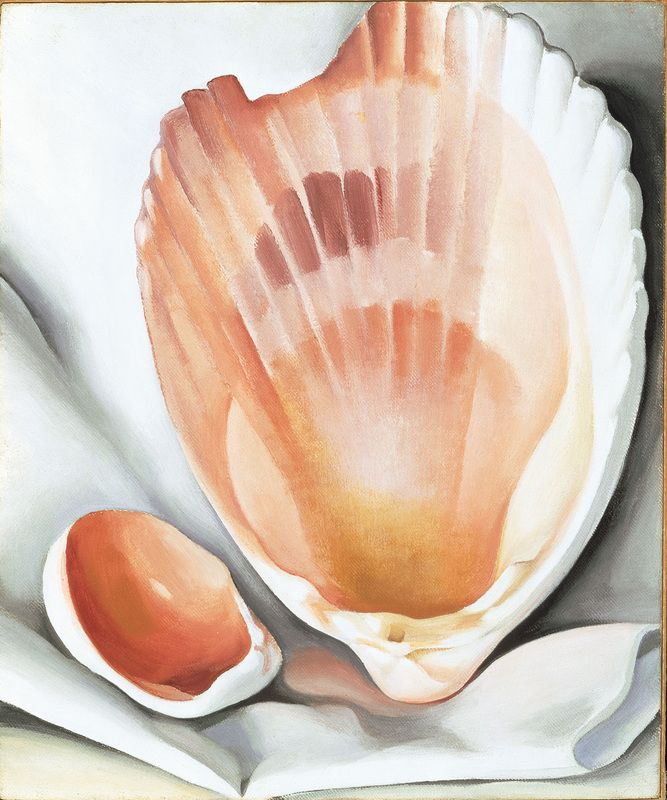 Georgia O'Keefe Two Pink Shells.jpg
