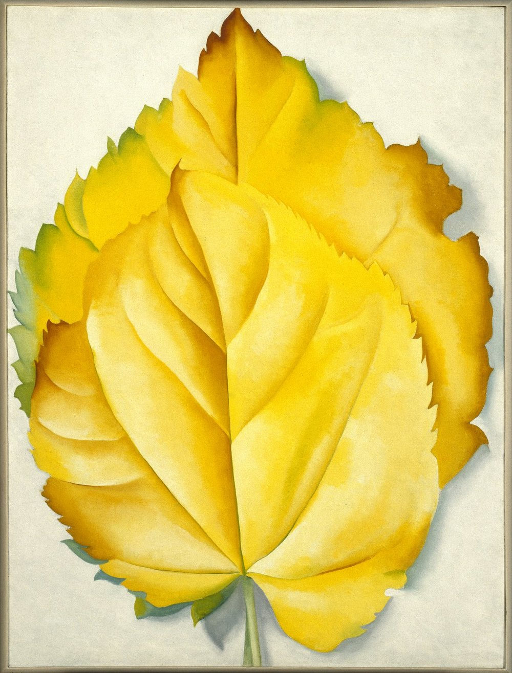 Two Yellow Leaves.jpg
