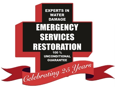 Emergency Services Restoration Premier Partner
