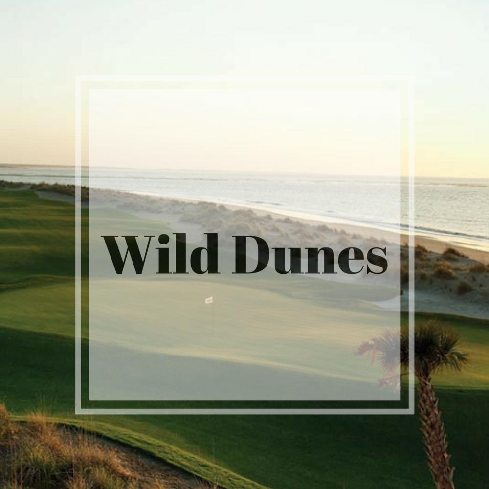 wild dunes.png