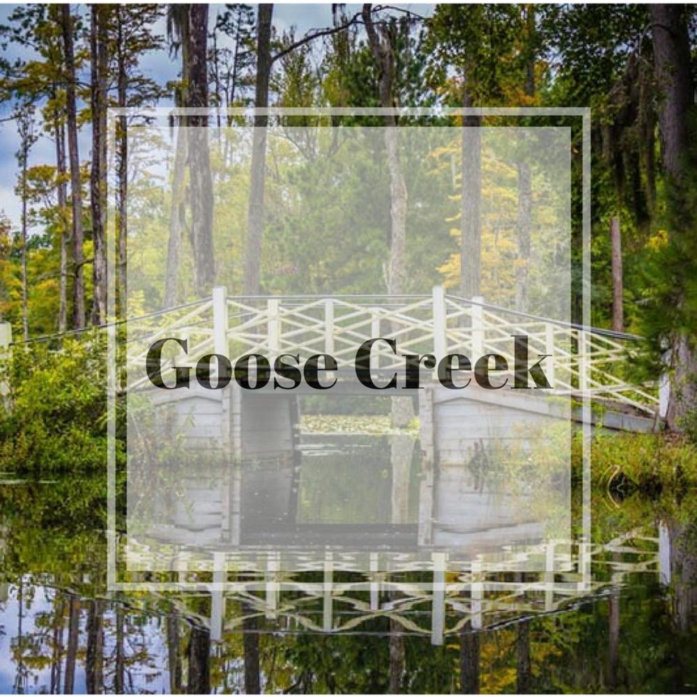 goose creek.png