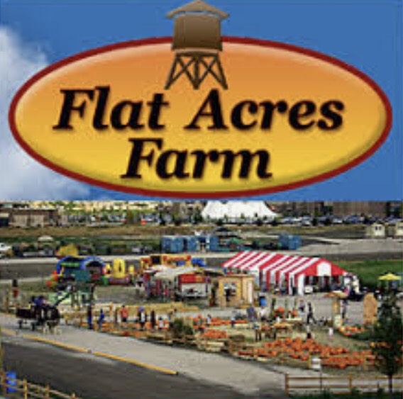 DESTINATION: Flat Acres Farm - Read about our experience at this local farm and the many attractions they had to offer. Visit to have fun as a family!Click HERE for full review.