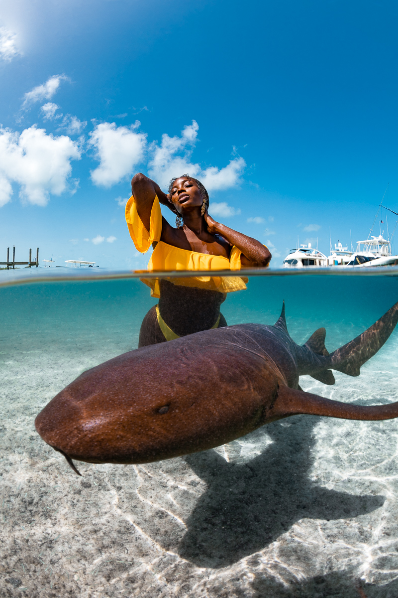 Nurse Sharks split shot in Staniel Cay Exuma Bahamas with Tanyka Renee (c) André Musgrove.jpg