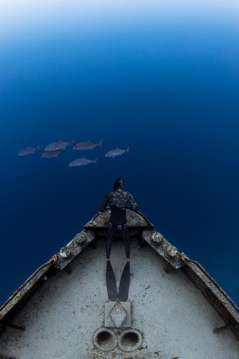 Freediver on Sea Trader Shipwreck