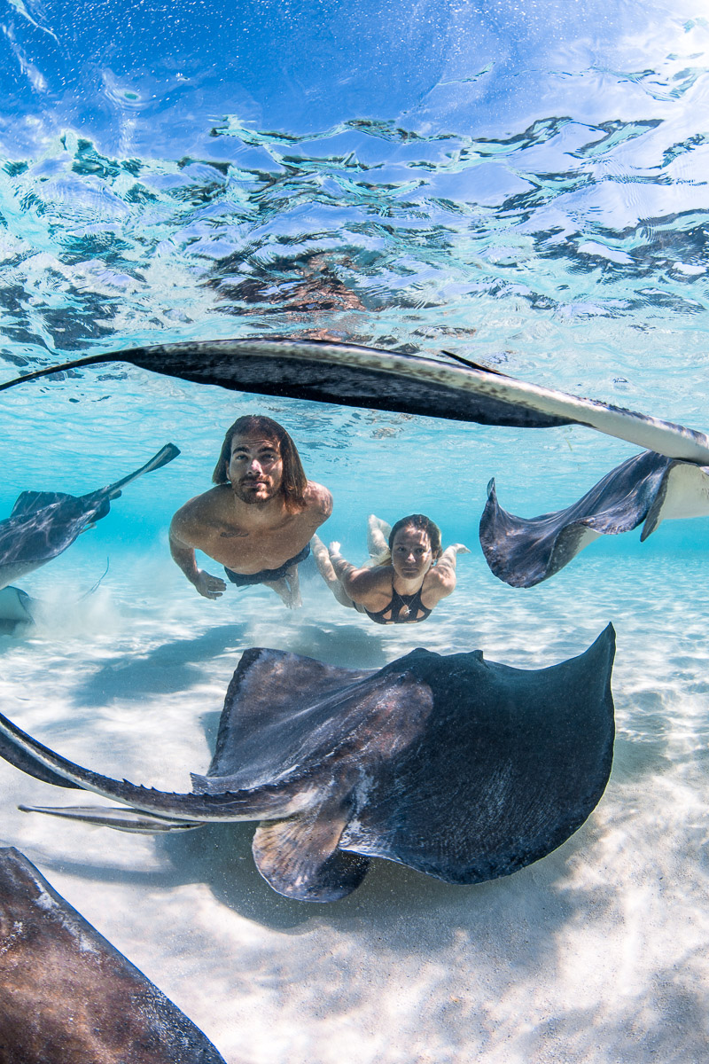 Swimming with Stingrays in The Bahamas