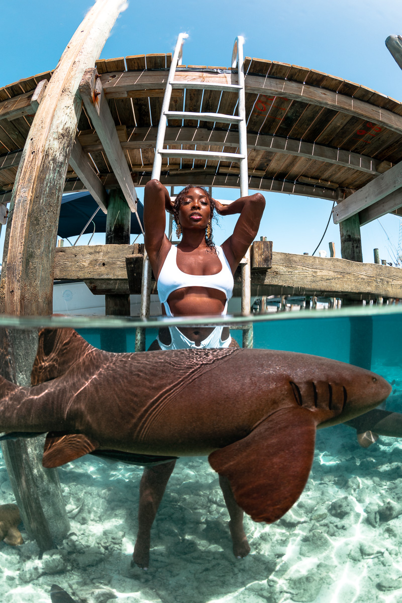 Nurse Sharks split shot in Staniel Cay Exuma Bahamas with Tanyka Renee (c) André Musgrove 2.jpg
