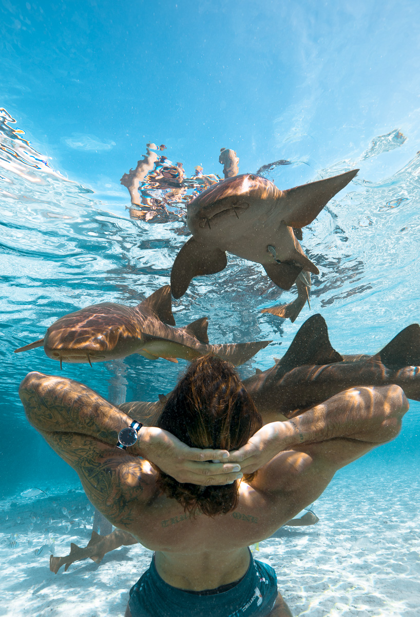 Paul Hewitt Watch ad photo in Staniel Cay, Exuma Bahamas with Nurse Sharks (c) André Musgrove 2018.jpg