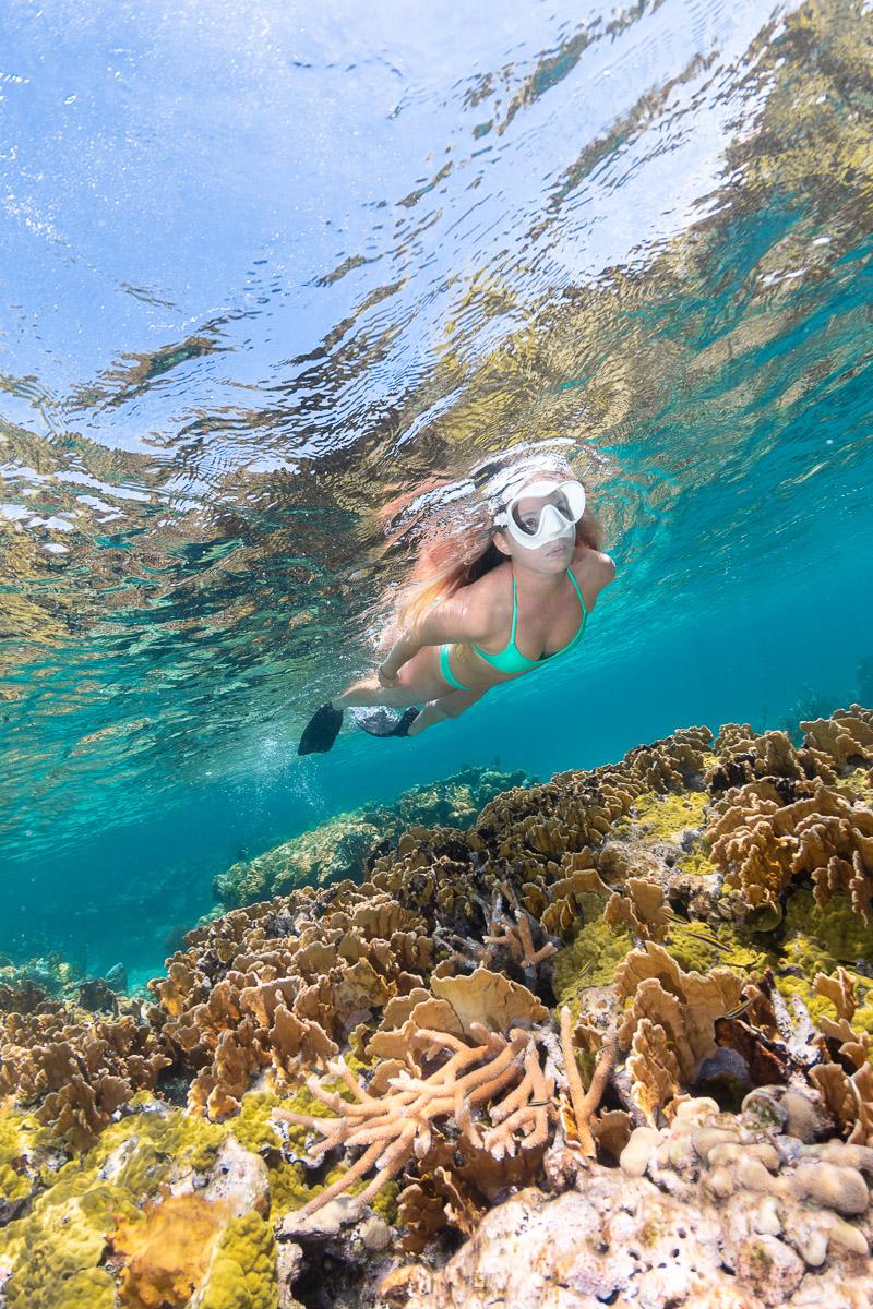 Snorkeling Coral Reefs Bahamas