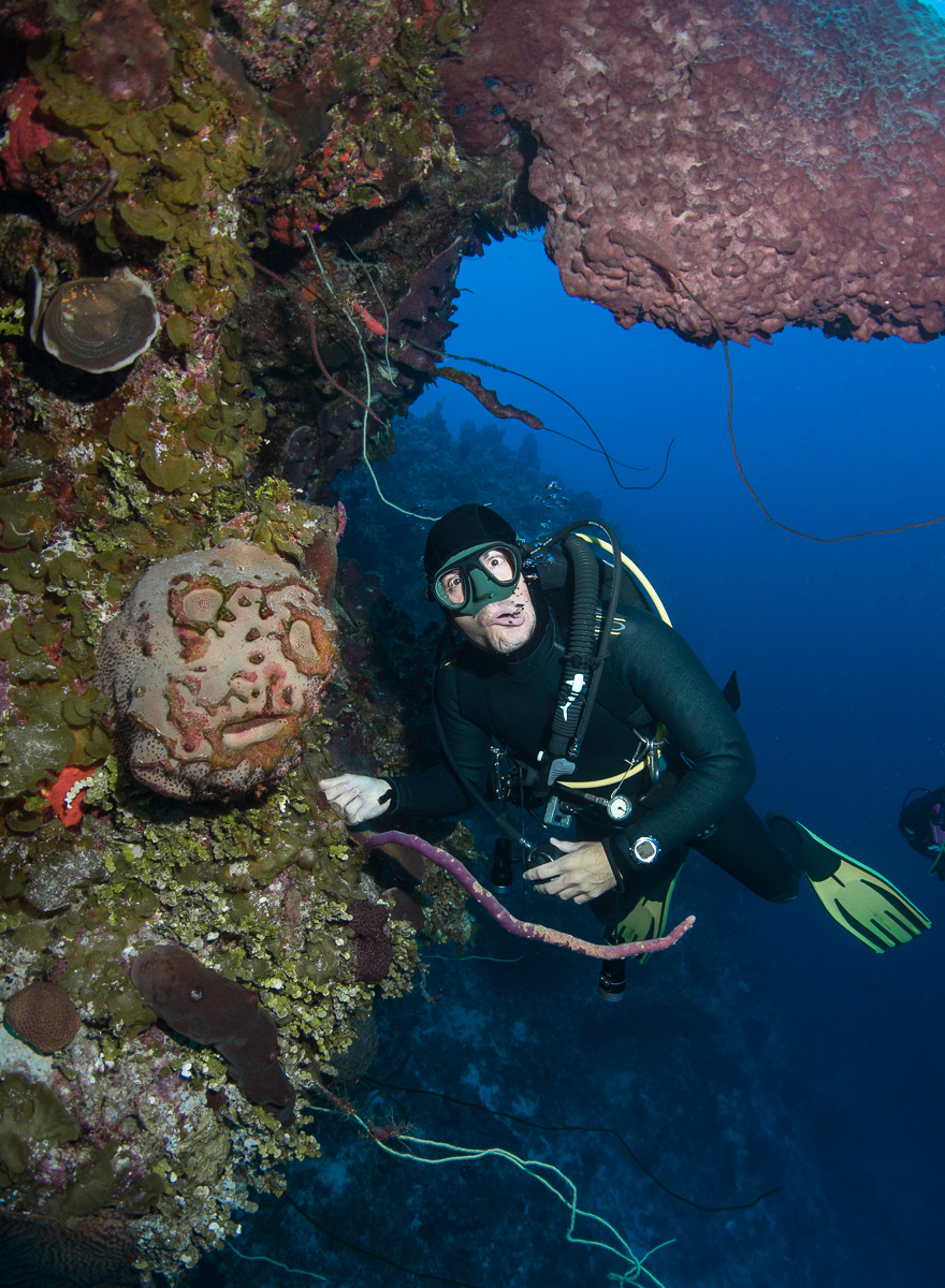 Scubadiver with Coral Bahamas (c) André Musgrove.jpg