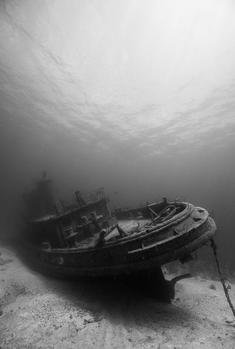 anthony Bell Shipwreck (c) André Musgrove 2018.jpg