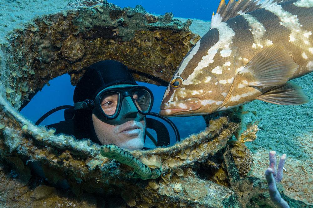 Scubadiver wit Nassau Grouper (c) André Musgrove 2018.jpg