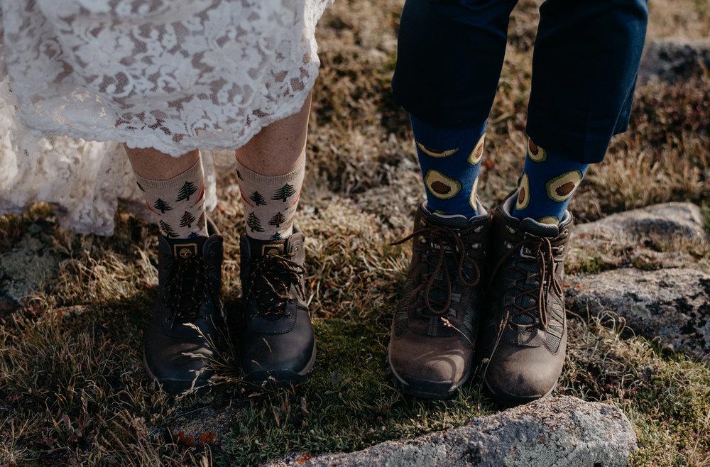 Trail Ridge Road adventure elopement in Colorado.