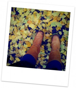 boots-and-leaves-polaroid-258x300.jpg