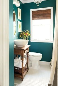 bathroom paint color.jpg
