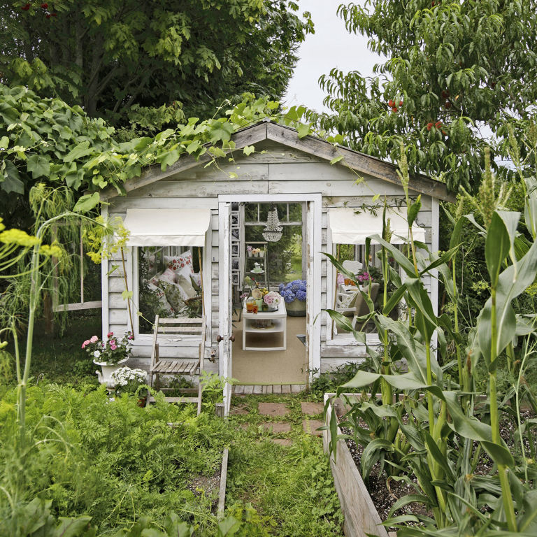 greenhouse she shed.jpg