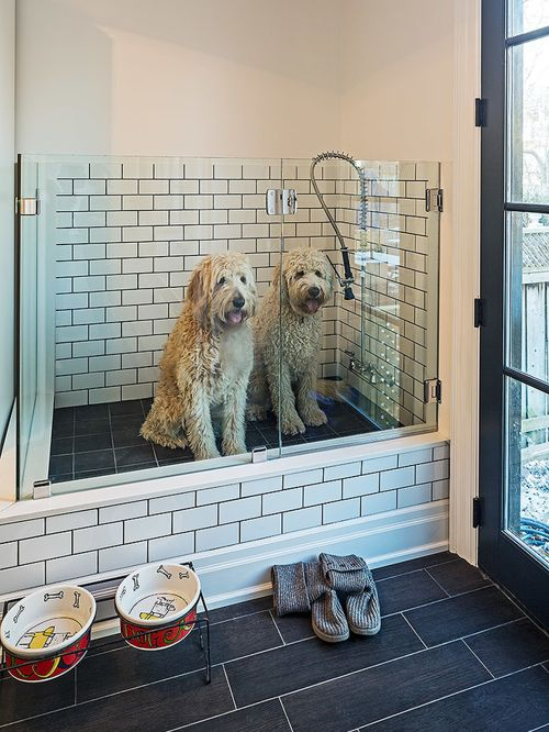 Mudroom Dog Washing.jpg