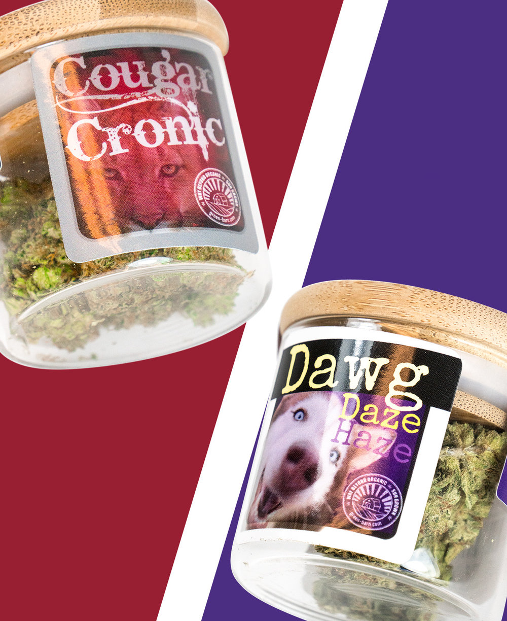 Apple Cup! - While Green Barn Farms is here, we will have 4g for $25 in special apple cup packaging &30% off all flower.10% off Green Barn Farms for the entire week.While Supplies Last