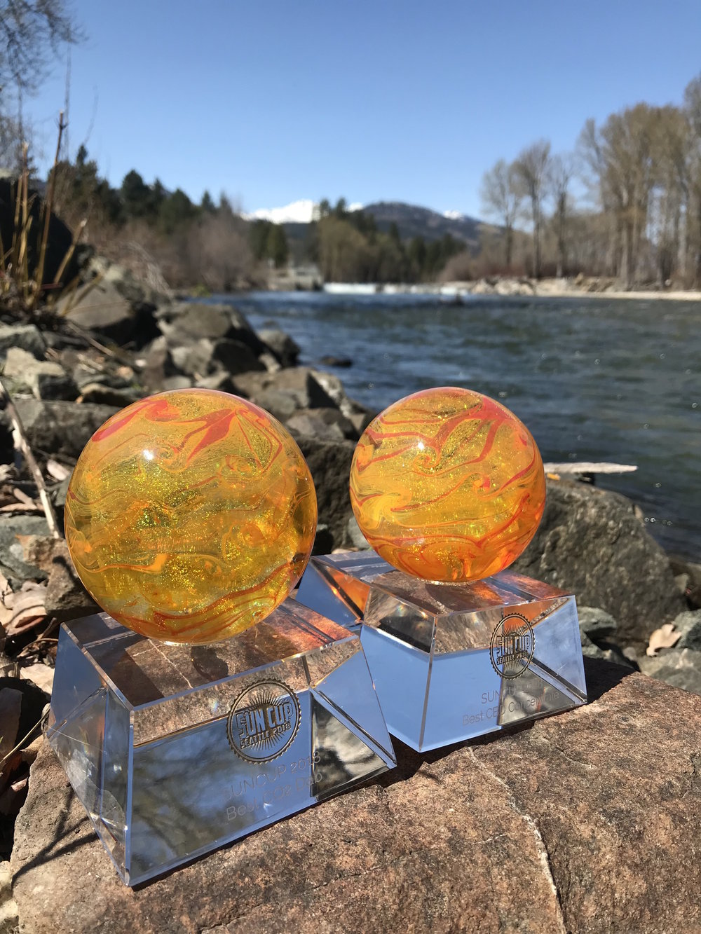 Lazy Bee Garden's 2018 Sun Cup Sungrown Weed Awards for Best THC Dab and Best CBD Concentrate