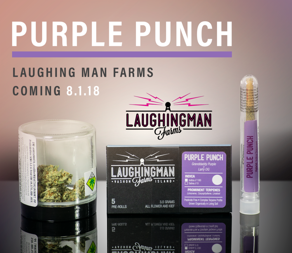 Purple Punch Cannabis Strain by Laughing Man Farms in Vashon Island Washington.png
