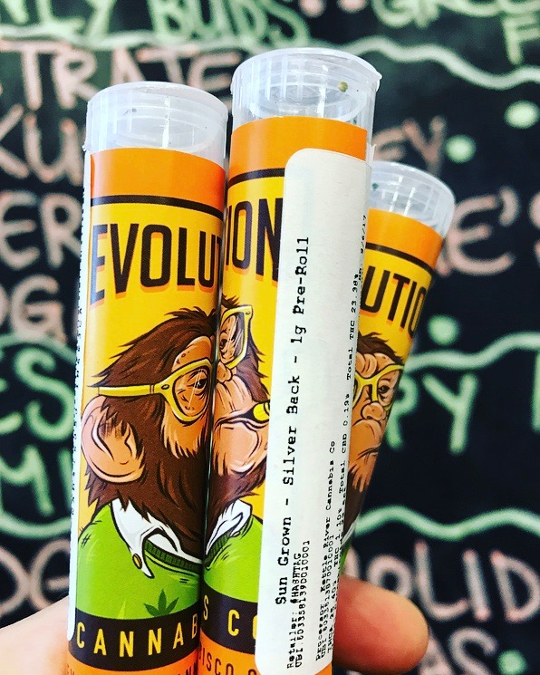 Make time for a mini-meditation with Silver Back. - Brought to us by Evolution Cannabis, whether you're smoking or vaping, Silver Back's euphoric and relaxed effects make it a great hybrid for taking time to sit with yourself and clear your mind.