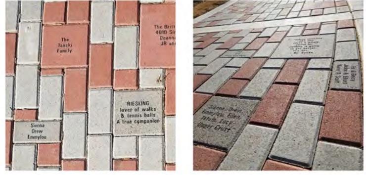 bricksforplayground.jpg
